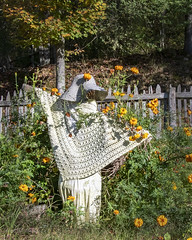 Guard (jmhutnik) Tags: scarecrow flowers autumn hat bonnet fence trees leaves garden pioneerfarm twinfallsresortstatepark westvirginia wyomingcounty
