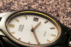 Time is for all remedy (Elopez ) Tags: macromondays remedy
