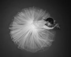 Hannah (Photography of Dance) Tags: ballet pointeshoes tutu nikon d850 silverefx savagepaper ballerina pointeshoe leotard girl youngballerina beautiful paulcbuff einsteins