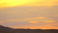Sahara Sunset (jmaxtours) Tags: morocco saharasunset moroccansunset sunset dunes sahara saharadesert desert sundown dusk camels silhouette sky skyline