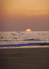 Solo........sur.....y......luz...... (pp diaz) Tags: ocaso puestadesol atardecer paisaje playa costa cielo mar arena tierra luz color aire costaballena rota cádiz andalucía españa