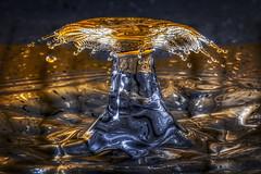The frying pan (t.schwarze) Tags: pentaxart droplet drop tropfen water wasser speedlights