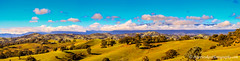 Mansfield, Victoria (Peter.Stokes) Tags: australia australian colour landscape nature outdoors photo photography forest panorama light