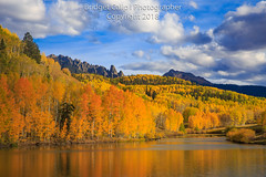 Autumn Tranquility (Bridget Calip - Alluring Images) Tags: alluringimagescolorado autumn bridgetcalip colorado fall grandmesauncompaghreandgunnisonnationalforest llc mtwilson rockymountains sanjuanmountains sanmiguelcounty telluride allrightsreserved aspentrees backroads blueskies changingseasons clouds copyrighted cumulusclouds dock explorecolorado fallfoliage fishing forest hiking leafpeeping outdoors outdoorscolorado recreation reflection roadtrip scenicdrive solitude