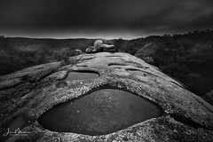 elephant Rocks (Wits End Photography) Tags: view natural landscape plants nature blackwhite rural woods picturesque rocks haze trees black country geological monochrome white forest scenic color blackandwhite grey bw rain places gray outdoor outside plant tree