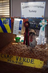 Verde Valley Fair 2018 (EllenJo) Tags: verdevalleyfair cottonwood arizona fair carnival fairgrounds april2018 may2018 springtimeincottonwood pentaxks1 ellenjo