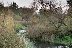 Dorzecze rzeki Rawki (WMLR) Tags: hd pentaxd fa 2470mm f28ed sdm wr pentax k1