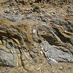 Highly convoluted gneiss (Archean; Norris South roadcut, Madison County, Montana, USA) 1 thumbnail