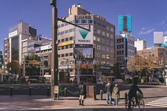 DSC_9622 (juor2) Tags: hokkaido university ginkgo japan nikon scene d4 streetsnap street