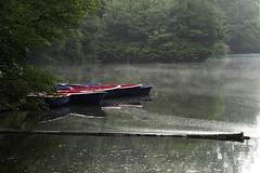 Morgens in Dresden... (Gabriele 24) Tags: vhs dresden boot dunst wasser teich park
