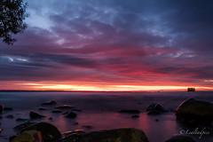DSCF3006 (Lealtadpics) Tags: northern ireland fujifilm xt2 autumnal sunrise water reflections clouds loughneagh rocks ballyronan ulster