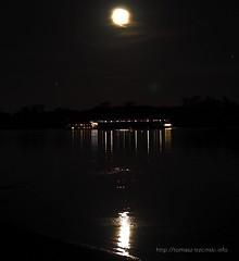 The Moonlighter (fotomuse2014) Tags: rhein rheingau moonlightsonata nightphotography travel river germany deutschland moonlight moon night