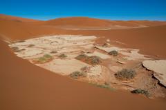 Sossusvlei ( Philippe L PhotoGraphy ) Tags: afrique namibie sossusvlei hardapregion na afric namibia désert etosha fauve dunesoiseaux rapace philippelphotography