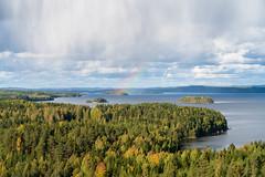 Autumn in Finland (@Tuomo) Tags: finland laukaa hyyppää hyyppäänvuori keskisuomi nordic autumn september landscape forest trees lake lievestuoreenjärvi sky clouds rain rainshower rainbow sony a7r3 a7riii sel24105g nature