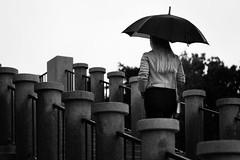 Stairs to heaven (novak.mato91) Tags: slovenija slovenia ljubljana people centralslovenia europe centraleurope balkan architecture blackandwhite rainyday rain nikon d7200 sigma1750