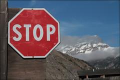 STOP (Maulamb) Tags: cartellostradale stop livigno