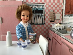 Waiting for help (Foxy Belle) Tags: doll tammy ideal vintage cardboard house dollhouse pink kitchen miniature 16 scene playscale pepper little sister cats meow food