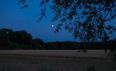 Countryside Dusk (music_man800) Tags: blue hour dusk night dark evening after sunset moon moonrise space sky field farm trees countryside rural fields outdoors outside walk hike nature natural light lighting silhouette leaves branches shapes eerie chelmsford river chelmer basin paper mill lock essex uk united kingdom landscape view scenery scene canon 700d adobe lightroom creative cloud edit photography arty artistic crop nightfall july 2018 summer warm