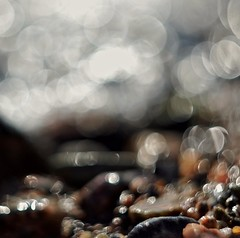 Pebbles and bubbles, last summer (Stefano Rugolo) Tags: stefanorugolo pentax k5 pentaxk5 helios44258mmf2 helios442 helios fotodioxmacroextensiontube fotodioxpro bokeh pebbles bubbles depthoffield shore water splash abstract pov manualfocuslens manualfocus manual vintageprimelens