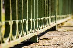 DSC_5453 (maxjouv) Tags: fence grille green vert bokeh