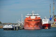 Bow Sirius (Hugo Sluimer) Tags: portofrotterdam port haven onzehaven nlrtm rotterdam zuidholland holland scheepvaart