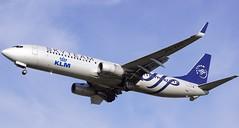 PH-BXO 2018-10 KLM 739 Cph (Danner Poulsen) Tags: 20181013 phbxo 201810 klm 739 cph royal dutch airlines boeing 737900 october 2018 kystvejen ekch danner spotting amsterdam hollannd denmark copenhagen landing arrival jet avion