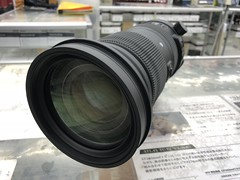 IMG_8005 (digitalbear) Tags: canon eos 6d markii eosr fujiyacamera tokyo japan sigma 60600mm f4563 dg sport