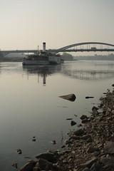steamboat and bridge (Haim Dizengoff) Tags: boat river dresden stones niedrigwasser elbe bridge waldschlöschenbrücke saxony herbst grau kalt wasser
