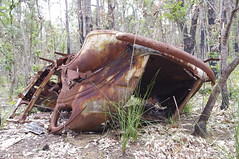 Name this car 2 (iainken) Tags: car crash old desolate rusty wreck