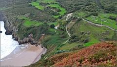 Bajando a la playa - Andrín - Asturias (Luisa Gila Merino) Tags: playa asturias andrín litoral prados verde maisema landscape arboleda bosque acantilado senda camino árbol