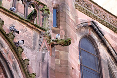 Vacances_0569 (Joanbrebo) Tags: freiburgermünster freiburg freiburgimbreisgau de deutschland badenwürttemberg catedral church esglèsia iglesia eglise canoneos80d eosd autofocus gargola gargoyle efs1855mmf3556isstm