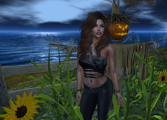 Guardians of Yore (Amanda Keen) Tags: second life halloween virtual world wiccan old religion norse scarecrow guardians
