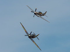 Sea Hurricane & Mustang (davepickettphotographer) Tags: mustang seahurricane oldwarden uk england airshow vintage theshuttleworthcollectionuk shuttleworthcollection bedfordshire biggleswade fighter aircraft aviation park airfield collection contrarymary duxfordbased american secondworldwar