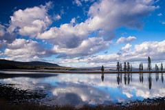 _MG_4529 - Yellowstone National Park. (j. mercier) Tags: nature nationalparks beauty beautiful jerrymercier mercier canon outdoor outside landscape landscapes tree forest wyoming water reflections reflection reflecting cloud clouds bluesky blue white fall autimn color colorful yellowstonenationalpark yellowstone y