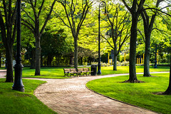 Park in boston (anekphoto) Tags: boston park city common garden public massachusetts urban cityscape skyline new usa england travel green landmark lawn downtown nature holiday plant grass tourism vacation relax rest walk stress woods sightseeing getaway afternoon lazy sunset modern commons business sky spring nobody architecture view scenic american tower america flowers outdoor chair