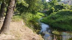 Camino Portugues (landeicgn) Tags: walk nature landscape paisaje jakobsweg camino santiago james way wasser water riachuelo creek stream