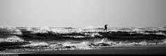 20170101_14k Surfer out among the waves | Rockaway Park, New York City (ratexla) Tags: ratexlasnewyorktrip2016 1000views newyorkcity 1jan2017 2017 canonpowershotsx50hs nyc newyork usa theus unitedstates theunitedstates america northamerica nordamerika earth tellus photophotospicturepicturesimageimagesfotofotonbildbilder wanderlust winter travel travelling traveling journey vacation holiday semester resaresor urban city town storstad storstäder storstadssemester newyearsday ontheroad rockawaypark rockawaybeach beach beaches strand stränder bw blackandwhite blackwhite monochrome svartvitt svartvita svartvit surfing surfer surfers drysuit watersport watersports sport sports wave waves water ocean marine sea hav havet person people human humans homosapiens ratexla almostanything unlimitedphotos favorite wow