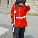 DSC02858 - Changing of the Guard