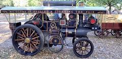 Dampftage (wernerfunk) Tags: schlepper dampftrecker steamengine steam traktor