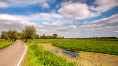 Midden Delfland (FotoCorn) Tags: middendelfland woudweg schiedam countryside rural rotterdam sheep field colorful clouds meadow ditch duckweed
