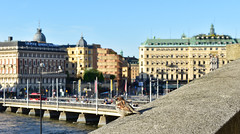 Bird's view to Stockholm (Naval S) Tags: stockholm sweden cityview cityscape bird sparrow