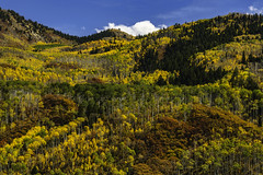 Colorado_fall_2018_2