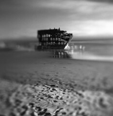 At home with the familiarity of history (Zeb Andrews) Tags: hasselbladflexbody peteriredale oregoncoast oregon blackwhite mediumformat film 6x6 swing selectivefocus pacificnorthwest beach coast pacificocean scannedatbluemooncamera nikoncoolscan9000