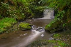 The Falling Stream (daviddalesphoto) Tags: exmoor devon england waterfall cascade river woods watersmeet