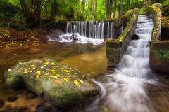 Signs of autumn (jmtostadoc) Tags: autumn fishingramp hojas bosque cascada piedras vegetación stones leaves pasarela waterfall river forest apha ramp a77 rampa nature rio otoño