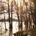 Un pique-nique les pieds dans l'eau?              _DSC0386_edit
