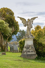 Colma 10.4.18 4 (Marcie Gonzalez) Tags: cypresslawnmemorialpark cypress lawn memorial park colma california san mateo county francisco usa us north america cemetery cemeteries cypresslawn south bay angel angels sculpture death graves statue grief texture outdoors westcoast cypresslawncemetery grave spiritual heaven