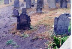 Vermont Graveyard (RockN) Tags: gravestone cemetery july 1992 barre vermont newengland