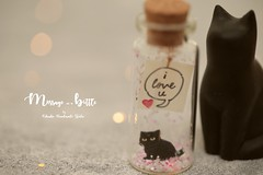 Tiny message in a bottle,Miniatures,Personalised,Valentine Card,Gift for her/him,Girlfriend gift, birthday card, holiday card and funny card ideas (charles fukuyama) Tags: blackcat cat kitty kitten pet swing xmas christmas ornament christmastreedecor handmadecard custommade unique cute art holidaycard homedecor deskdecor glitter lovecard sweet greetingscard paper seasonalcard partygift personalizedgift longdistancegift kikuikestudio tiny anniversarycard