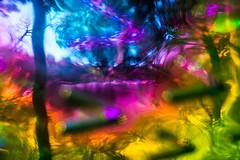 20181013-087 (sulamith.sallmann) Tags: analogeffekt analogfilter berlin blur bunt deutschland effekt effekte farbenfroh filter folie folientechnik reinickendorf tegel unscharf sulamithsallmann